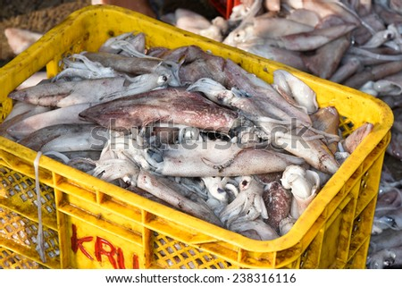 Sea food. Fish market in India. Heap of fish for sale - stock photo