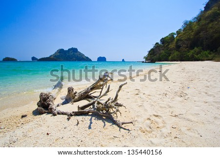 Sea landscape and wood in Thailand
