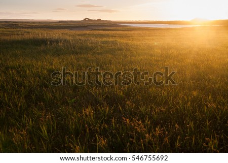 sea landscape in the evening light in Iceland