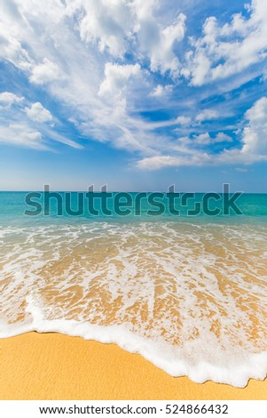 Sea landscape, the beach, the running wave