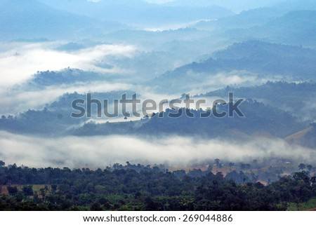 Sea mist background mountain top view