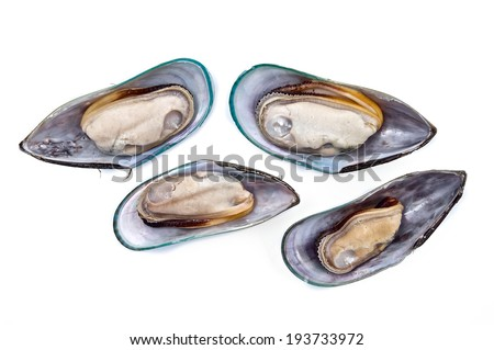 Sea Mussels on white background - stock photo