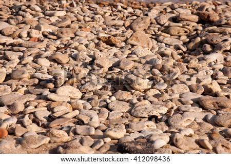 sea pebble on the sea coast close up - stock photo