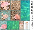 Sea shells and ocean collage - stock photo