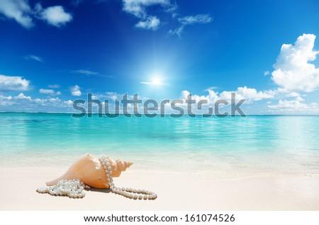 sea shells and perls on the beach - stock photo