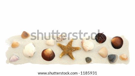 Sea shells and sand isolated on white. - stock photo