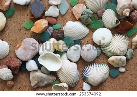 sea shells and stones, background - stock photo