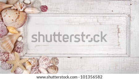 Sea shells arranged on a vintage door, announcement, card or invitation - stock photo