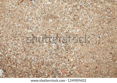 sea ??shells with sand texture - stock photo