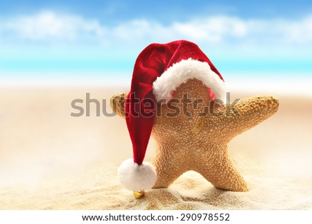 Sea-star in red santa hat walking at sea beach. New Years day or Christmas in hot countries vacation concept - stock photo
