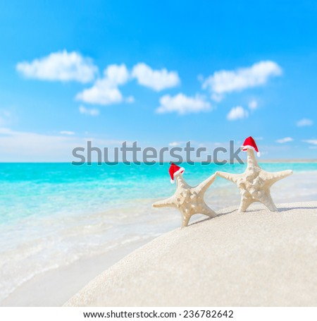 Sea-stars couple in red santa hats walking at sea beach. New Years day or Christmas in hot countries vacation concept - stock photo