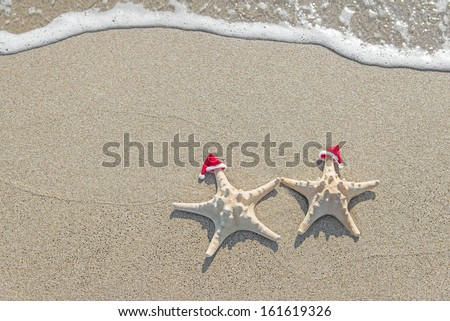 Sea-stars couple in santa hats on the sand. New Years and Christmas vacations at beach concept. - stock photo