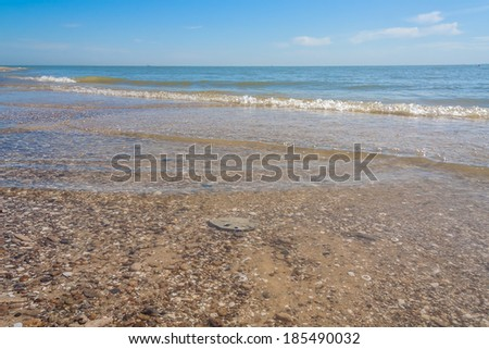 Sea summer morning on a background of blue sky with clouds