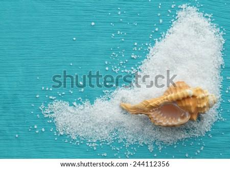 Sea theme frame background with salt and seashell - stock photo