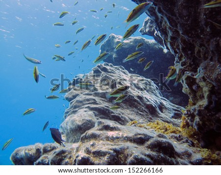 sea view from under water - stock photo