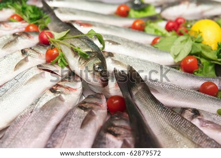 Seabass on cooled market display - stock photo