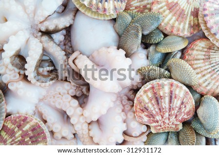 Seafood background, scallops octopus and seashells - stock photo