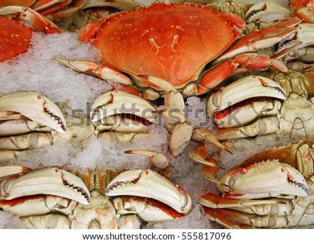 Seafood Crab on Ice