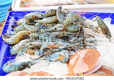 seafood for sale in the fresh market, fresh shrimps and scallops on ice - stock photo