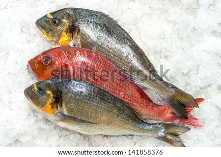 Seafood on ice at the fish market  - stock photo