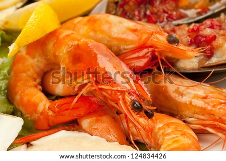 Seafood salad  on a white background - stock photo