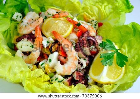 Seafood Salad on lettuce - stock photo