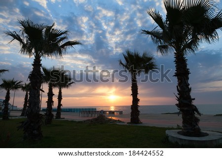 Seafront of Batumi with palm tree silhouettes  - stock photo