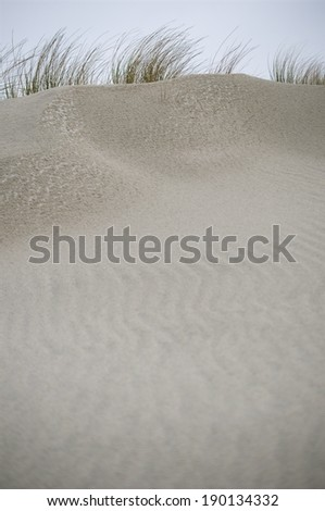Seagrass, Dunes and Sand - stock photo