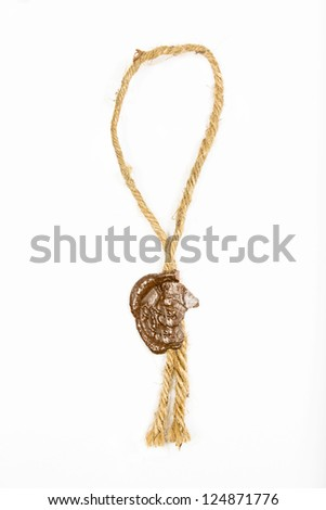 seal on a white background - stock photo