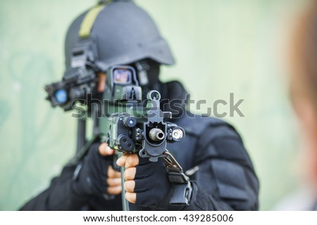 seal training - stock photo