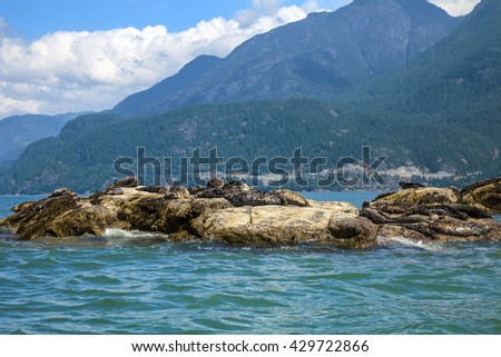 Seals islands landscape. Pacific Ocean. Rocky islands. British Columbia.Canada - stock photo