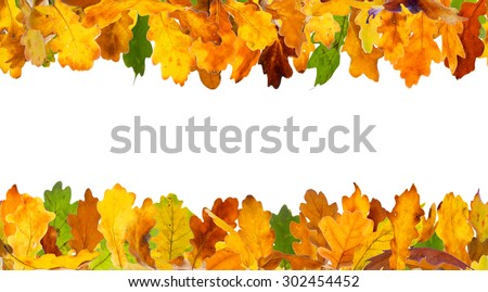 Seamless autumn colour oak leaves frame, isolated on white.