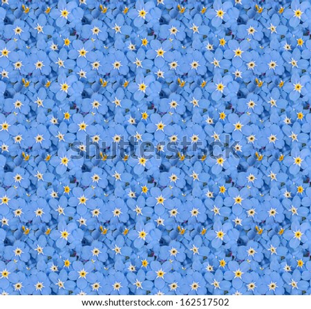 seamless background with blue forget-me-not flowers - stock photo
