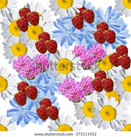 Seamless  background with meadow flowers and raspberries - stock photo