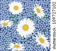seamless background with meadow flowers forget-me-not  and chamomile - stock photo