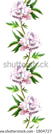 Seamless floral banner strip with white-pink peony flower. Watercolor. - stock photo