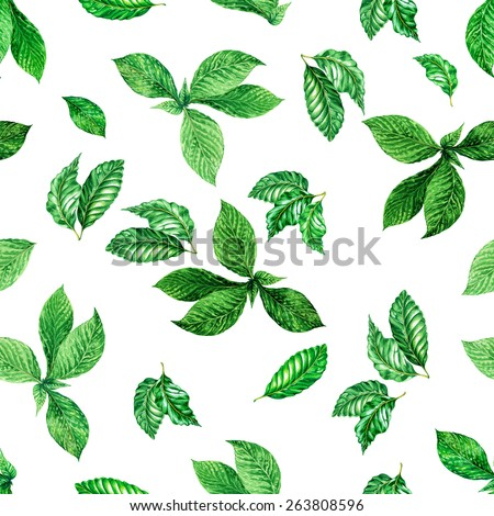 seamless foliage pattern. detailed botanical illustrations of exotic leaves: mint and ficus. - stock photo