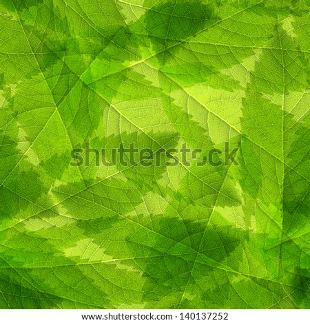 Seamless  green leaves background - stock photo