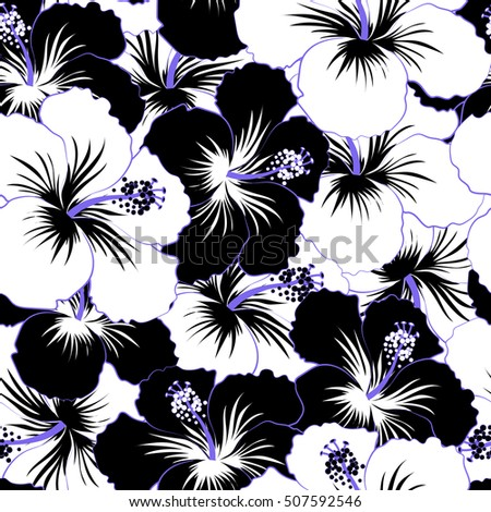 hibiscus seamless stock images royaltyfree images