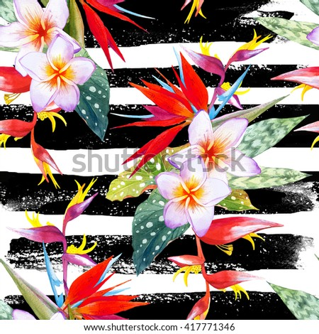 Seamless pattern with watercolor tropical flowers and plants onblack and white striped background. Composition with plumeria, strelitzia, palm and begonia leaves.  - stock photo