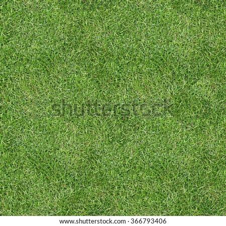 Seamless square green grass texture. - stock photo