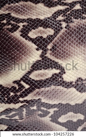 Seamless texture backgroun brown snake leather - stock photo
