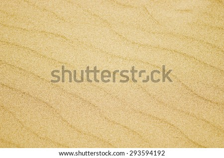 Seamless texture of sand beach. Sand background template. Sand beach - stock photo