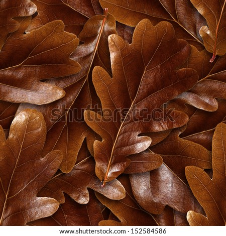 Seamlessly brown oak leafs background. - stock photo