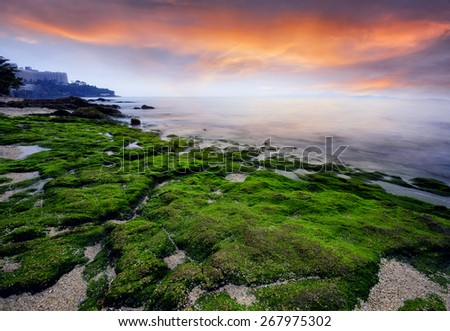 seascape light Sunset Long exposure shooting  green moss on the stone . - stock photo