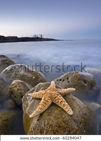 Seascape taken at dusk in a rocky beach of the Costa Blanca of Spain, with a big starfish on the foreground and the ghostly figures of the last tourist of the day on the background. - stock photo