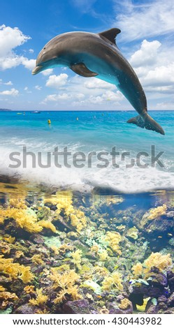 seascape with underwater fishes and jumping dolphin - stock photo