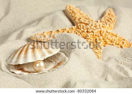 Seashell on a sandy beach with a pearl in it