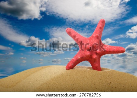 Seashells and starfish on sand on a background of sky and sea - stock photo