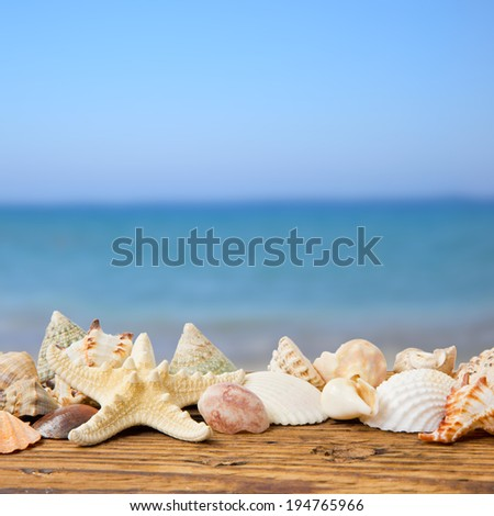 Seashells on wooden desk with sea and sky background - stock photo